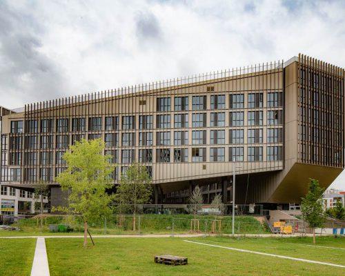 Cour école campus Aubervilliers